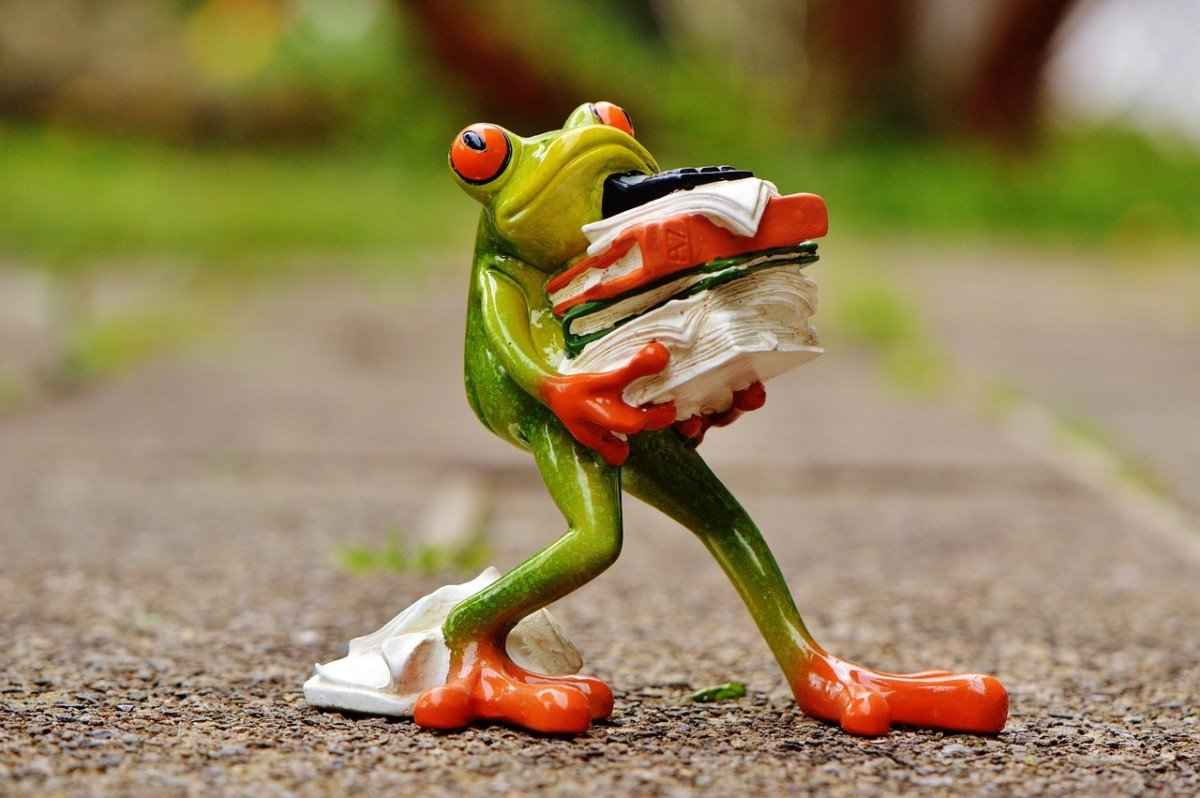 frog-1339916_1280